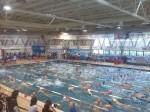 piscina-rapallo-ii-trofeo-master-di-primavera